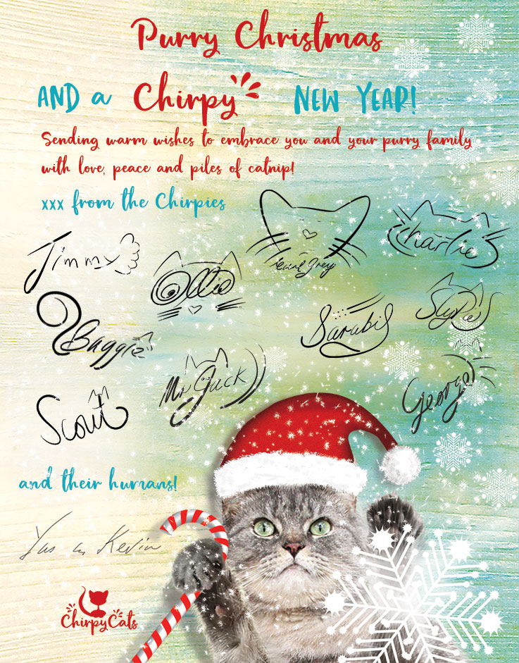 Christmas greeting card email http15andmeowinghttp published december 21 2017 at 737 941 in christmas eve m4hsunfo